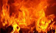 Dambai: Minister's 115 Acre Mango Farm Burnt To Ashes