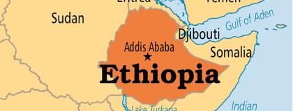 Ethiopia To Aid Return Of 541 Nationals Stranded In Tanzania