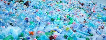 Threatened By Non-Biodegradable Plastics