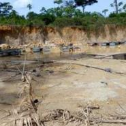 Government Commended For Curbing Illegal Mining
