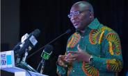NPP Achievements Confusing Some People--Vice President