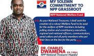 Ghanaians In China Want Akufo-Addo To Stop Ambassador From Contesting NPP Post