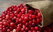 5 Foods For Healthier Gums