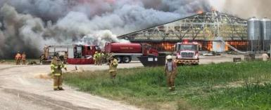 Ohio: About 5,000 Pigs Burnt Alive