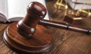 Woman And Her Son Granted Bail Over Assault