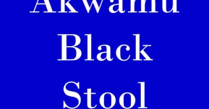 Akwamu Black Stool is for the Great Ansah Sasraku from Yaa Ansaa Royal Family - Late Odeneho Kwafo Akoto II