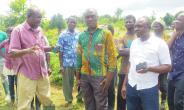 USAID/PPRSD Schooled Farmers On Cherry Pepper Farm Management