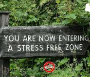 5 Fun Ways Corporate Workers Can Escape Stress