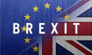 Soft Brexits and Hard Realities: The Tory Revolt