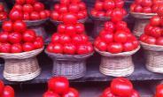 Takoradi records least decline as tomato prices drop again