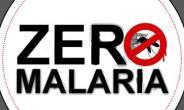 Upper East Hits Zero Under-five Malaria Mortality