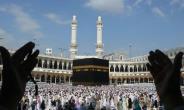Hajj Board Reveals Three Pilgrims Died