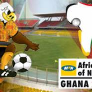 CAN 2008: Group D round-up