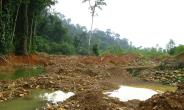 Must President Akufo-Addo Reject Mining Bauxite InThe Atewa Forest Reserve