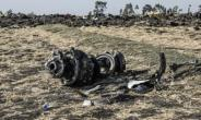 The crash of Flight ET 302 minutes into its flight to Nairobi on March 10 killed all onboard and caused the worldwide grounding of the Boeing 737 MAX 8 aircraft model involved in the disaster.  By Michael TEWELDE (AFP/File)