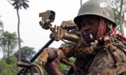The DR Congo government said its troops were waging a war against Ugandan rebels active in North Kivu province.  By ALAIN WANDIMOYI (AFP/File)