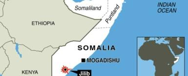 The five men, aged between 22 to 36, were killed in the southern Somali town of Jilib, the US-based SITE Intelligence Group said.  By jmc, gil (AFP/File)