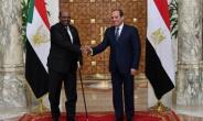 This week's dispute comes despite warming ties between Egypt and Sudan, whose presidents Abdel Fattah al-Sisi (R) and Omar al-Bashir met in Cairo in January.  By STRINGER (EGYPTIAN PRESIDENCY/AFP)
