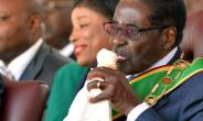 Zimbabwe's Robert Mugabe, seen here eating ice cream at his inauguration after the 2013 elections, owns the large Gushungo dairy.  By Alexander Joe (AFP/File)