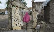 A girl walks through an area where a Nigerian fighter jet mistakenly bombed civilians in January.  By STEFAN HEUNIS (AFP)
