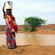 Cholera, a water-borne disease, has claimed more than 500 lives in the Lake Chad region this year.  By NATASHA BURLEY (AFP)