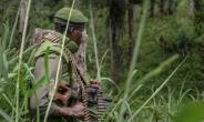 Congolese soldiers regularly carry out operations against the Allied Democratic Forces militia (ADF) in North Kivu province.  By ALAIN WANDIMOYI (AFP/File)