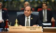 Egyptian President Abdel Fattah al-Sisi said Sunday protesters elsewhere were