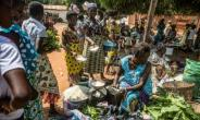Every Saturday, Togoville, a village some 65 kilometres (40 miles) east of the Togolese capital, Lome, holds its lively traditional barter market.  By Yanick Folly (AFP)