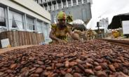 Ivory Coast is the world's top cocoa producer and the industry accounts for 15 percent of its GDP.  By Sia KAMBOU (AFP)