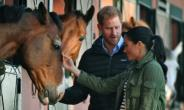 Prince Harry and his wife Meghan petted the horses which are providing a source of therapy for young people with disabilities.  By FADEL SENNA (AFP)