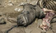 South Africa's iconic Kruger park has long borne the brunt of rhino poaching.  By WIKUS DE WET (AFP/File)