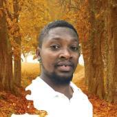 Kwesi  Akpari