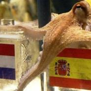 Paul the octopus has predicted that Spain will beat the Netherlands to win the 2010 World Cup.