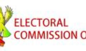 EC to provide for proxy voting and vote transfer