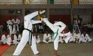 Incorporate Taekwondo training in schools – Kweku Sekyi Addo