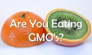 """""""Coexistence"""" With GMOs Is Impossible"""