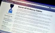 Fallout from Latest Wikileaks
