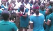 Nursing And Midwifery Council Of Ghana Needs A System Review
